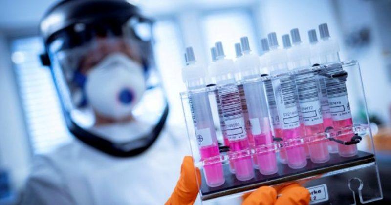 """""""Efficacia vaccino? L'8%"""". Fonti del governo tedesco rivelano lo scandalo. L'Azienda smentisce"""